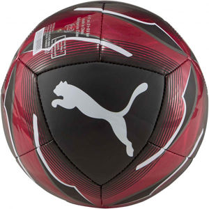 Puma ACM ICON MINI BALL  1 - Mini focilabda